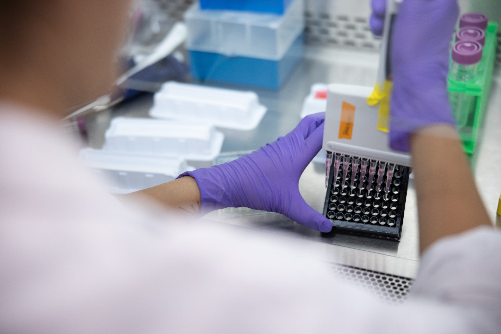 person pipetting samples